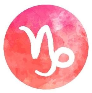 Capricorn Mala Bracelet- January